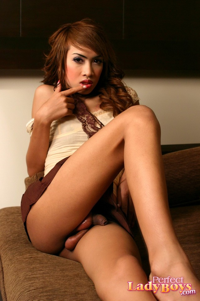 Perfect ladyboys